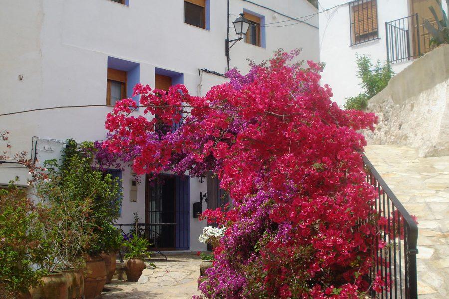 5 ideas para una escapada de primavera a Sot de Chera: un fin de semana rural desde Valencia
